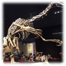 東京都杉並区 放課後等デイサービス まぁぶる高井戸 上野恐竜博